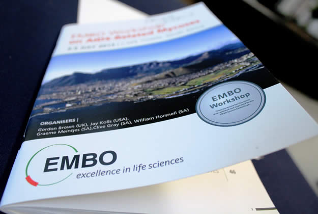 Embo workshop 2013